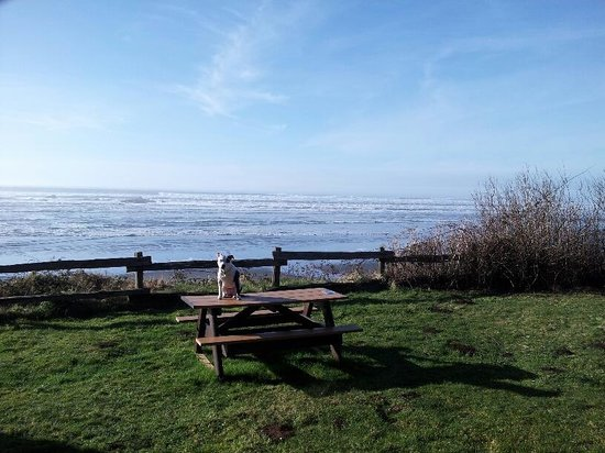 Kalaloch Lodge:                   Picnic Table at each cabin