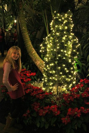 Gaylord Opryland Resort & Convention Center:                   Lights