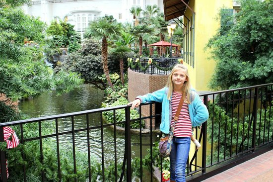 Gaylord Opryland Resort & Convention Center:                   water view