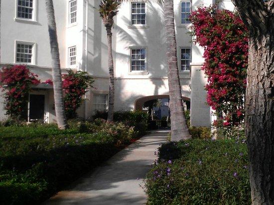 The Regent Palms:                   Property