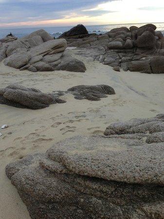 Las Ventanas al Paraiso, A Rosewood Resort:                   beach walk