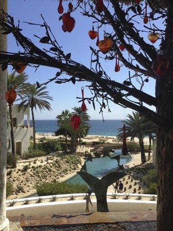 Las Ventanas al Paraiso, A Rosewood Resort:                   from lobby