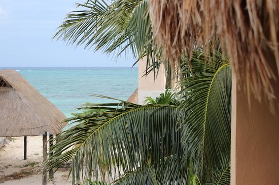 Mayan Beach Garden:                   View from our room