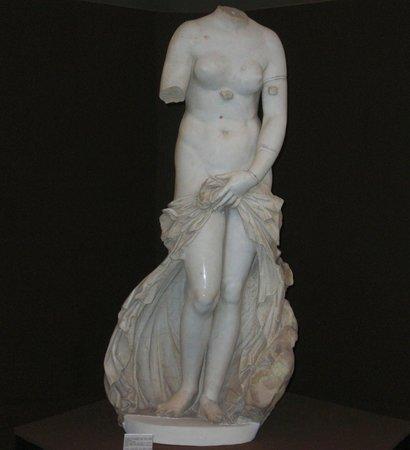 Museo Archeologico Regionale P. Orsi :                   Venus Landolina