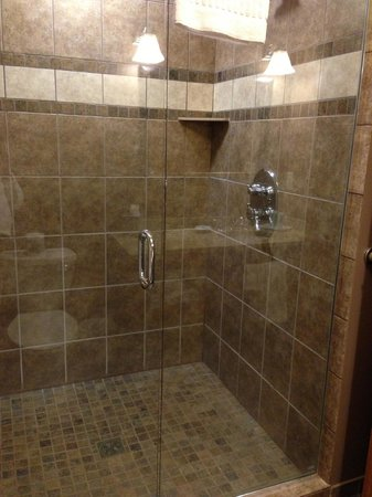 Timberlake Lodge Hotel:                   Shower