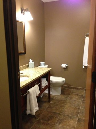 Timberlake Lodge Hotel:                   Bathroom