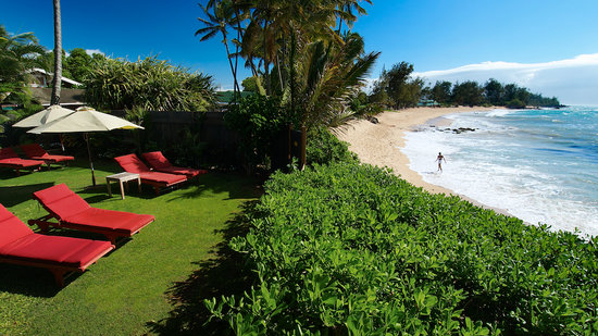 Paia Inn : Ocean Front Beach Lounge