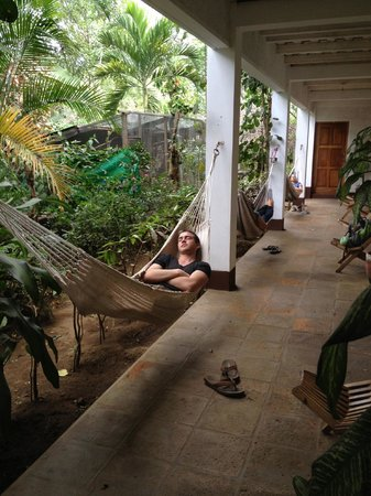 La Mariposa Spanish School and Eco Hotel :                   students relaxing in between classes