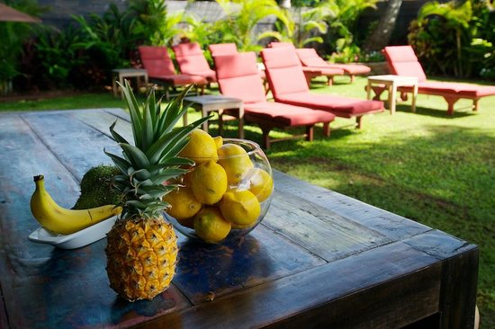 Paia, HI: Ocean front beach lounge, just steps to the water
