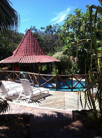 Hotel Luna Llena: Piscina/Bar