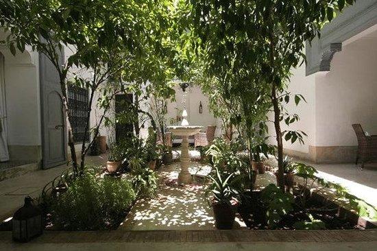 Dar Hanane: Courtyard