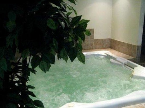 Hotel Motel Le Chateauguay: Spa