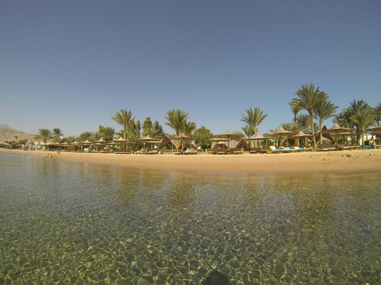 Tirana Dahab Resort: beach in Jan