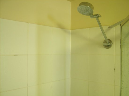 Broadbeach Savannah Resort: Black mould in the shower - very poor.