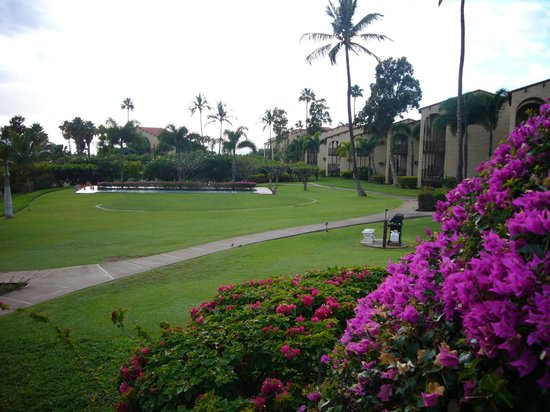 Aston Maui Hill Grounds