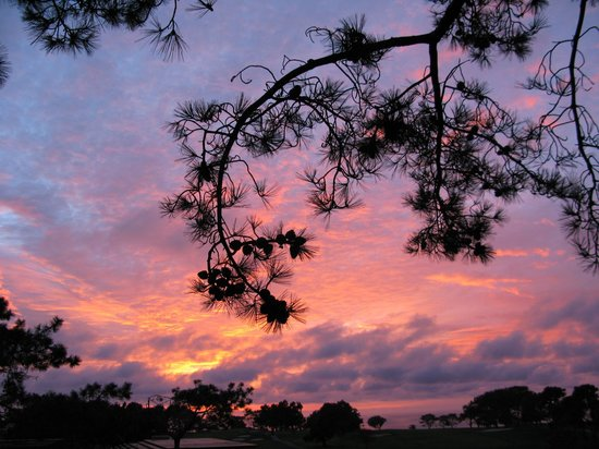 The Lodge at Torrey Pines:                   amazing sunsets