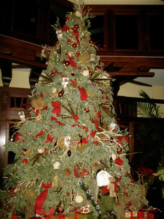 The Lodge at Torrey Pines:                   Christmas tree near the lobby