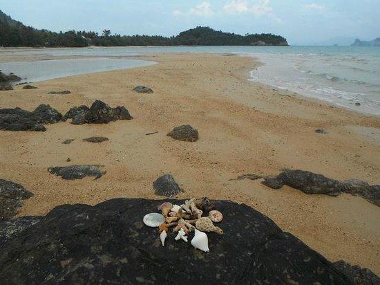 Koh Yao Beach Bungalows:                   The beach
