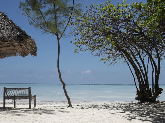 Ndame Beach Lodge Zanzibar: The beach