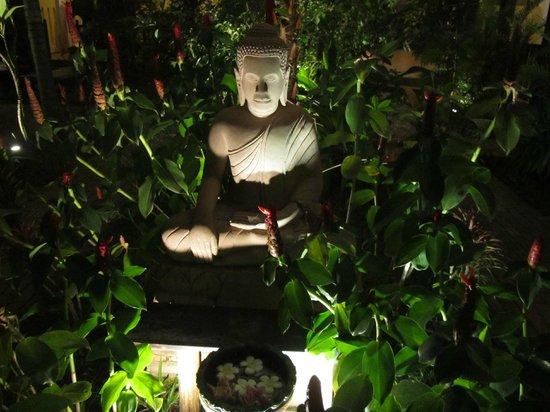 سيدارتا بوتيك هوتل: jardín