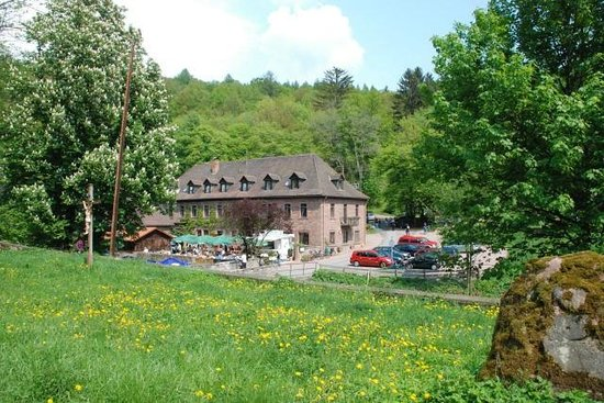 Hotelgasthof Buchenmuehle: Buchenmühle im Buchental