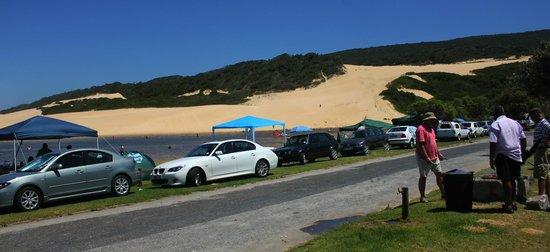Van Stadens Nature Reserve: the sand dunes