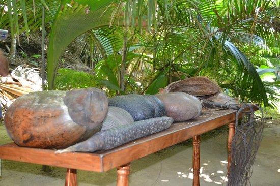 Praslin Adası, Seyşeller: 5