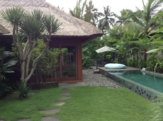 Luwak Ubud Villas:                   Het zwembad en een van de slaapkamers.