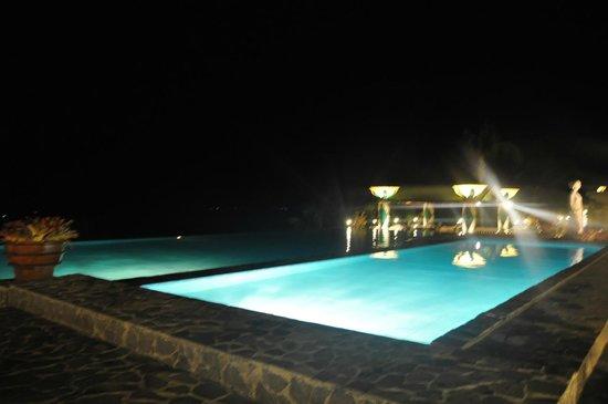 The Peacock Garden:                   night swimming                 
