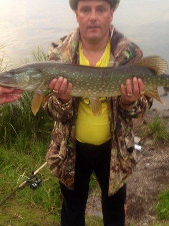 Portsonachan Hotel:                   Wee fish at loch awe