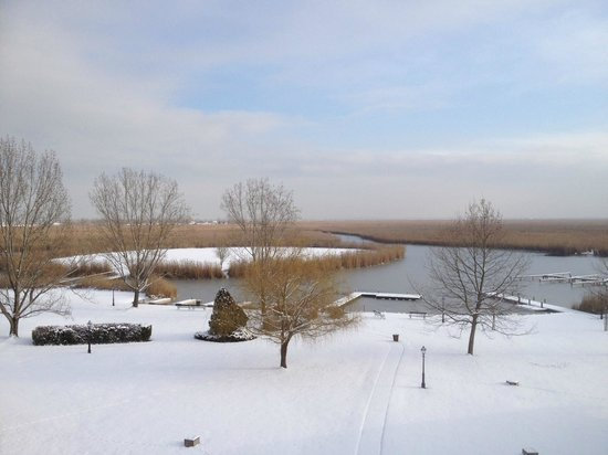 Seehotel Rust: view from seehotel in the snow