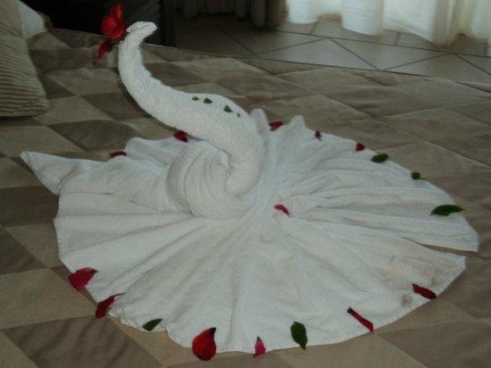 Jaz Mirabel Park: towel swan
