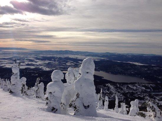 Whitefish Lake Winter