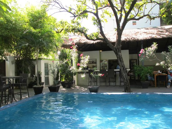 โรงแรมเดอะ 252:                   Pool & bar area - see it is an oasis!