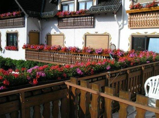 Hotel Restaurant Berghof:                   uitzicht van mijn balkon.typisch duits