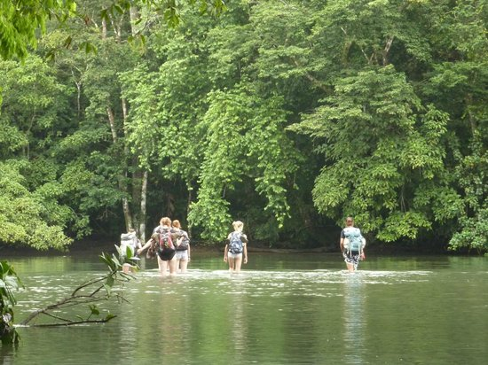 Corcovado National Park:                   Crossing a river in the park