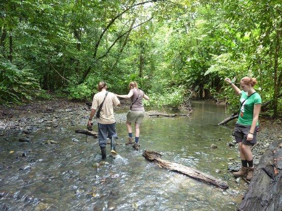 Corcovado National Park:                   Rodolfo is a gentleman