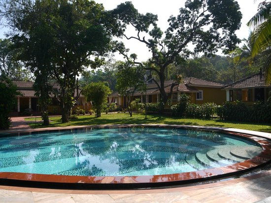 Hotel Bougainvillea - Granpa's Inn:                   pool and poolside rooms