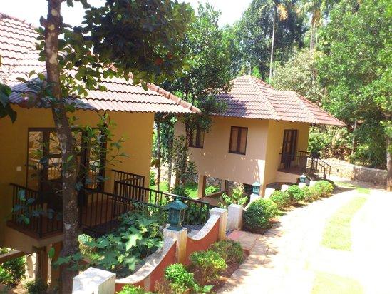 cottages picture of rippon mount resorts kalpetta tripadvisor rh tripadvisor in