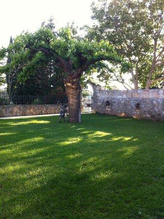 Villa Lav: Vista del giardino