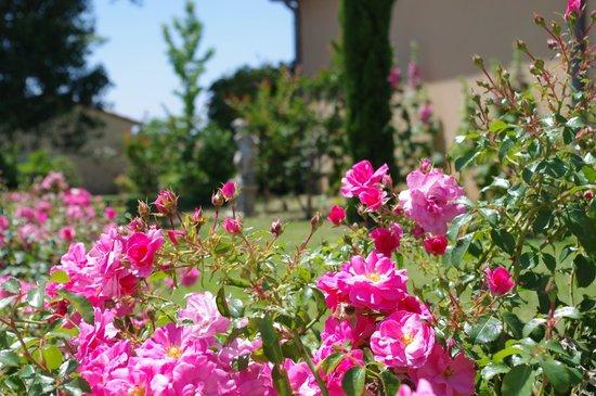 Hotel La Bastide d'Iris: Jardin La Bastide d'Iris - Hôtel**** en Ardèche