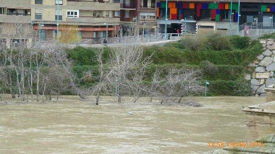 El Ebro: Nivel del agua en el margen izquierdo