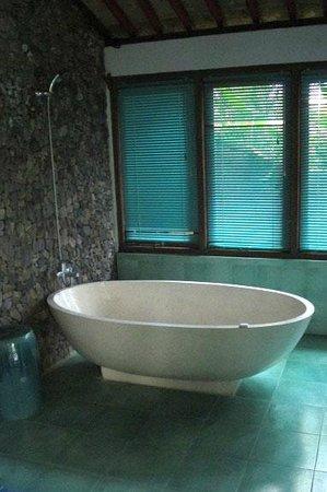 Bebek Biru Sideman Bali :                   Intereting bath