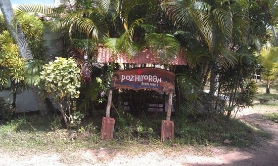 Pozhiyoram Beach Resort:                   resort