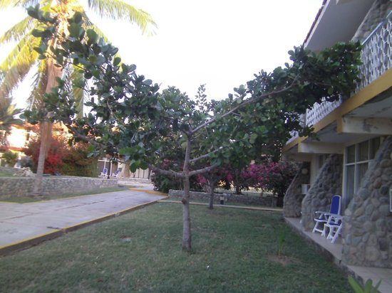 Club Amigo Carisol Los Corales:                   vor dem Hotelzimmer