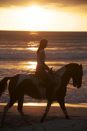 Mal Pais, Costa Rica: Tour: Sonnenuntergang