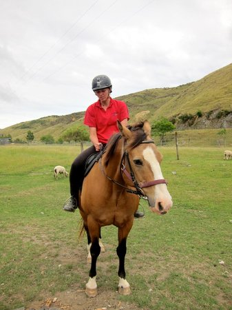 Happy Valley Adventures: the friendly guide demonstrating how to mount and control the horse
