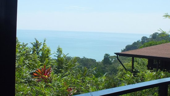 TikiVillas Rainforest Lodge: Vue superbe de la chambre