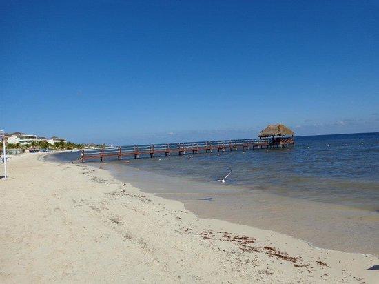 Azul Beach Resort Sensatori Mexico:                   Seaweed minimal