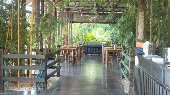 TikiVillas Rainforest Lodge & Spa 사진